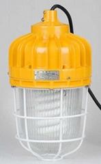 豪情 防爆高壓鈉燈 250W 400W  ccd96  ccd97