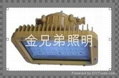 LED防爆燈50W