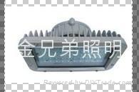 led巷道燈60W /dgs60/127L
