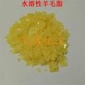 水溶性羊毛脂 4