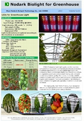 LED growth Light for Greenhouse