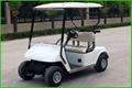 2座電動高爾夫球車 1