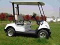 2座電動高爾夫球車 2