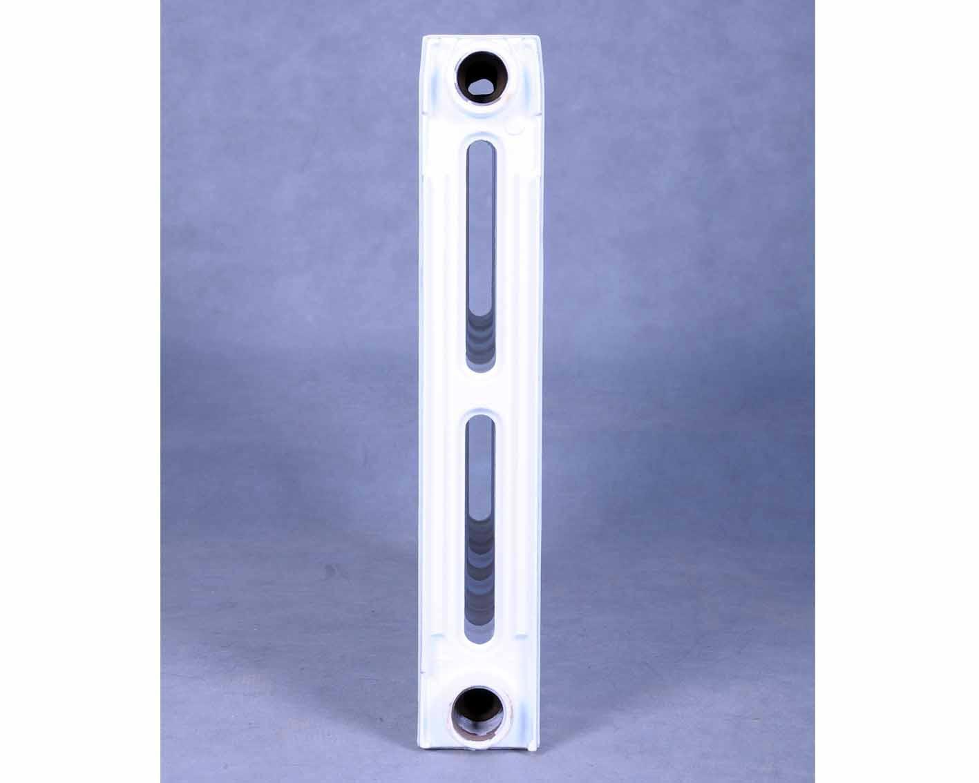 新藝666型鑄鐵散熱器SC(WS)TXY2-6-8(10) 1