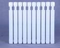 新藝666型鑄鐵散熱器SC(WS)TXY2-6-8(10) 2