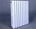 鑄鐵暖氣片CFIM3-565