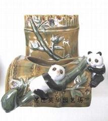 lucky bamboo pots
