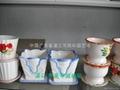 富貴竹瓷盆 3