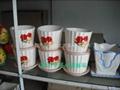 富貴竹瓷盆 4