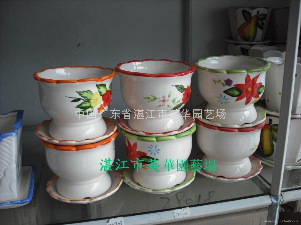 lucky bamboo pots 5