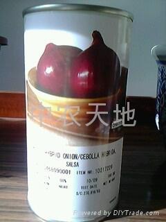 红福红皮洋葱种子 1