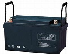 VRLA Smf Battery, Sealed Free Maintenance Lead Acid Battery Upto 12v300ah