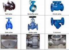gate valve, check valve, ball valve, globe valve, butterfly valve, Y strainers,