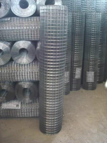 不锈钢电焊网 1