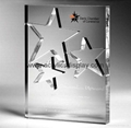 crystal acrylic five-pointed star award trophy