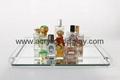 plexiglass acrylic serving tray
