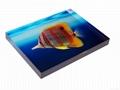 lucite paper weight lucite block