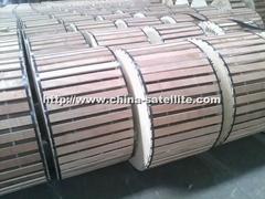 P3 500 JCA, P3 500 JCAM109, P3 500 JCASS Trunk Cable