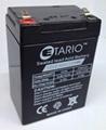 12V2.6AH蓄电池