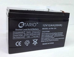12V12AH蓄电池
