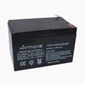 12V12AH蓄电池 4