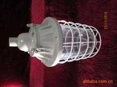 DCG-隔爆型防爆節能燈85W