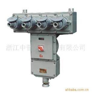 BXS-系列防爆檢修電源插座箱 1