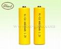 1.2V AA/AAA 250~ 1000mAh Ni-Cd rechargeable battery 4