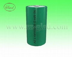Size D 12V 8000~10000mAh rechargeable