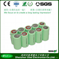Size D 12V 8000~10000mAh rechargeable Ni-MH batteries 2