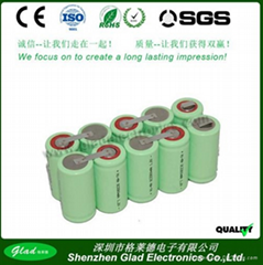 Size D 12V 8000~10000mAh rechargeable Ni-MH batteries