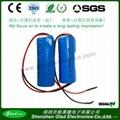 2400mAh 18650 li-ion battery 3.7v for torch light 5