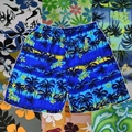 Beach pants printing fabric shoes cap