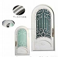 Alumininum front door
