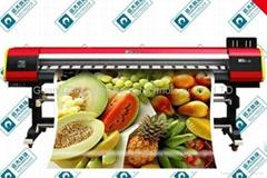 ECO solvent outdoor wallpaper printer