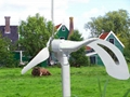 Angel 200w wind turbine    2