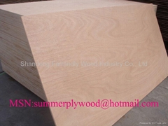 18mm Okoume Face Furniture Plywood