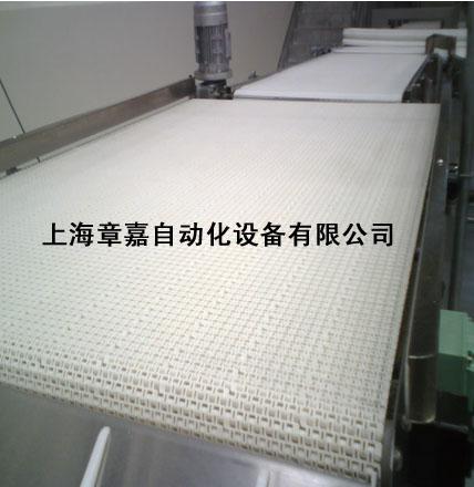 模塊式塑料網帶輸送機 1