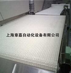 模塊式塑料網帶輸送機