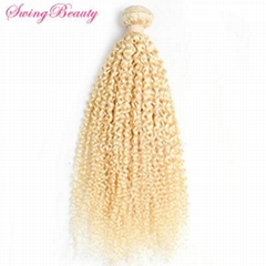 100% Pure Virgin European Remy Cuticle Human Hair Curly Extensions