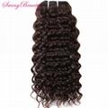 100% Virgin Raw Cuticle Remy Hair Weft