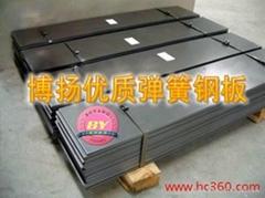 德國撒斯特61SiCr7彈簧鋼進口高強度彈簧鋼板彈簧鋼的特性