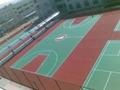 承建丙烯酸籃球場 1