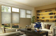 Bintronic Motorized Day And Night Cellular Shades