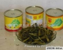 Pickled Potherb Mustard