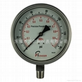 Stainless steel test pressure gauges