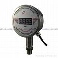 Remote pressure gauge