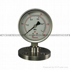 100mm径向全不锈钢隔膜压力表
