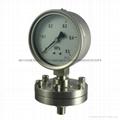 不锈钢隔膜压力表 7
