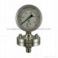 不锈钢隔膜压力表 8